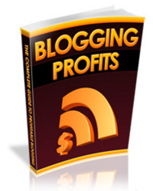 Product picture blog profit goldmine MRR